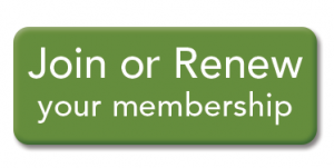 Join-Renew-Membership-Button